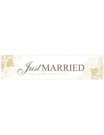 Banner Just Married (50x11,5cm)