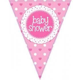 Bandeiras Baby Shower ( Rosa e Azul )