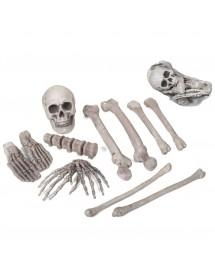 Esqueleto ( 12 Peças )