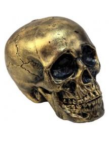 Caveira Dourada (20cm)